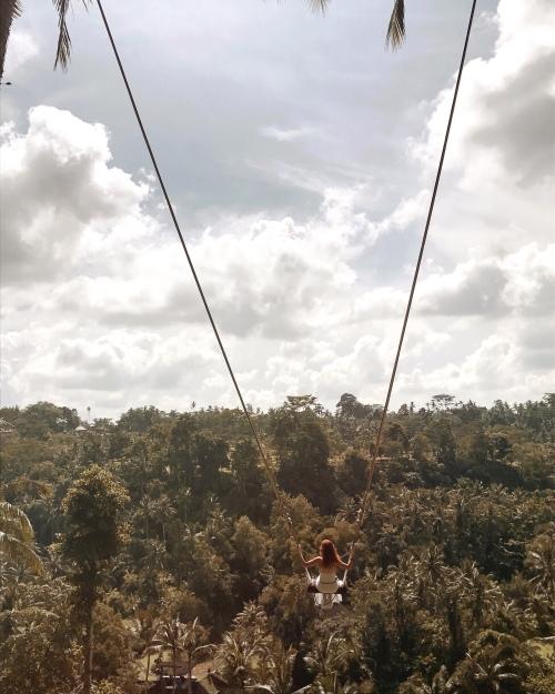 The Ubud Swing
