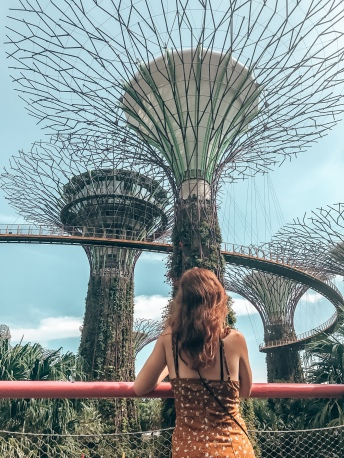 The Singapore Super Trees