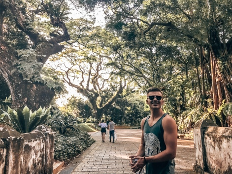 Morning walks in Singapore
